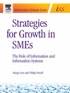 Strategies for Growth in SMEs (eBook): The Role of Information and Information Sytems