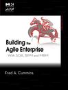 Building the Agile Enterprise (eBook): With SOA, BPM and MBM