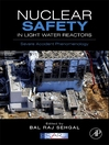 Nuclear Safety in Light Water Reactors (eBook): Severe Accident Phenomenology