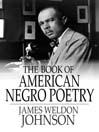 The Book of American Negro Poetry (eBook)