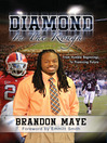 Diamond in the Rough (eBook): From Humble Beginnings to Promising Future