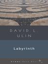 Labyrinth (eBook)