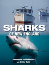 Sharks of New England (eBook)