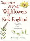 Summer & Fall Wildflowers of New England (eBook)