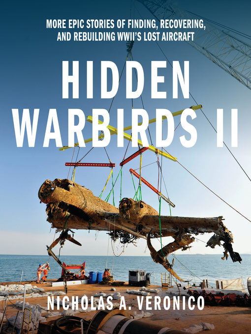 Hidden Warbirds II (eBook): More Epic Stories of Finding, Recovering, and Rebuilding WWII's Lost Aircraft