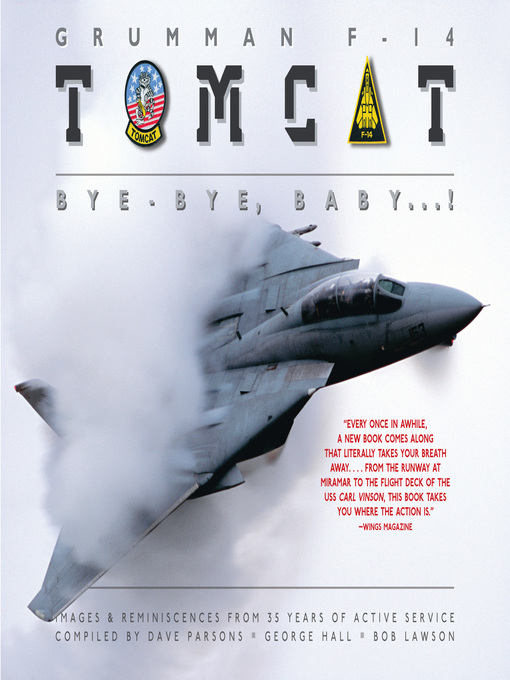 Grumman F-14 Tomcat (eBook): Bye - Bye Baby...!: Images & Reminiscences From 35 Years of Active Service