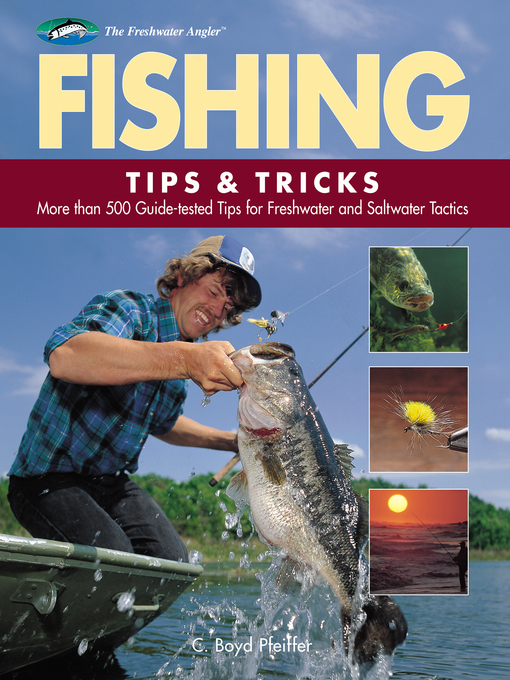 Fishing Tips & Tricks (eBook): More Than 500 Guide-tested Tips for Freshwater and Saltwater Tactics