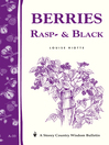 Berries, Rasp & Black (eBook): Storey Country Wisdom Bulletin A-33