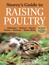 Storey's Guide to Raising Poultry (eBook): Chickens, Turkeys, Ducks, Geese, Guineas, Gamebirds
