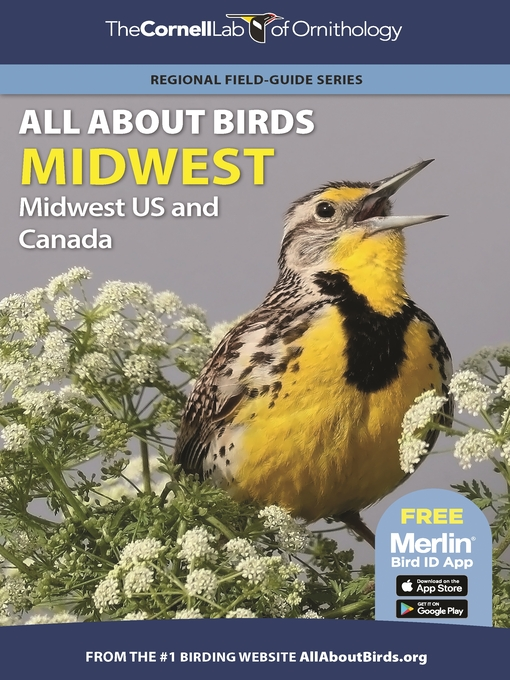 Rare Birds of North America (eBook)