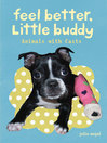 Feel Better Little Buddy (eBook): Animals with Casts