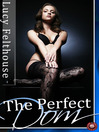 The Perfect Dom (eBook): Four Short BDSM erotic stories