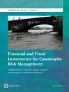Financial and Fiscal Instruments for Catastrophe Risk Management (eBook): Addressing the Losses from Flood Hazards in Central Europe
