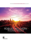 World Bank East Asia and Pacific Economic Update 2010, Volume 2 (eBook): Robust Recovery, Rising Risks