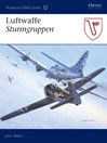 Luftwaffe Sturmgruppen (eBook)