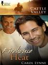 Firehouse Heat (eBook)