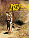 Land of the Striped Stalker (eBook): Wildlife of Madhya Pradesh