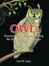 OWL (eBook): Representing Information Using the Web Ontology Language