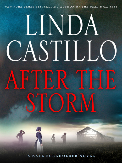 After the Storm [electronic resource]