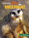 Mia the Meerkat (eBook)
