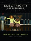Electricity for Beginners (eBook)
