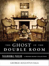 Ghost in the Double Room (eBook)