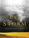 In the Eye of the Storm (eBook): A Day in the Life of Jesus