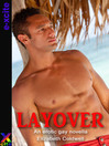 Layover (eBook): An erotic gay novella