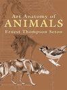 Art Anatomy of Animals (eBook)