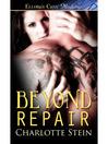 Beyond Repair (eBook)