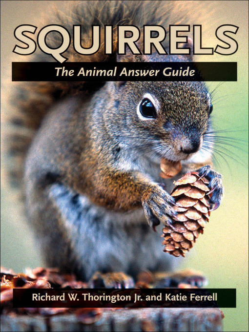 Squirrels (eBook): The Animal Answer Guide