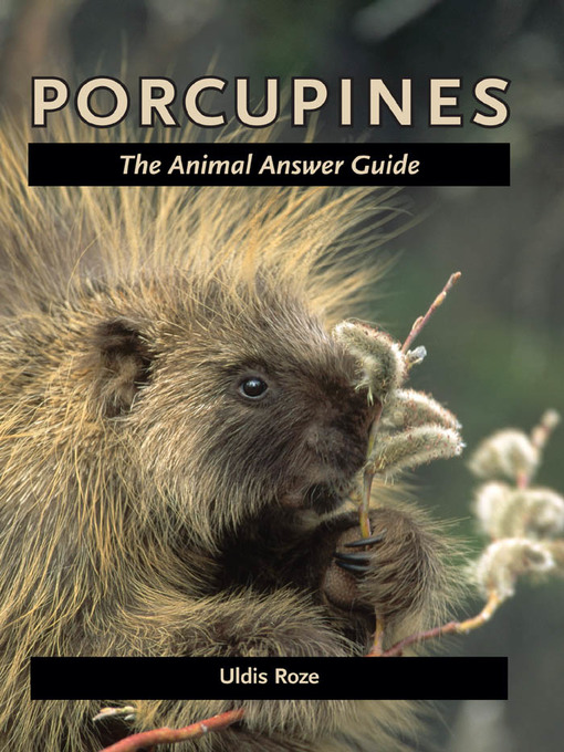 Porcupines (eBook): The Animal Answer Guide