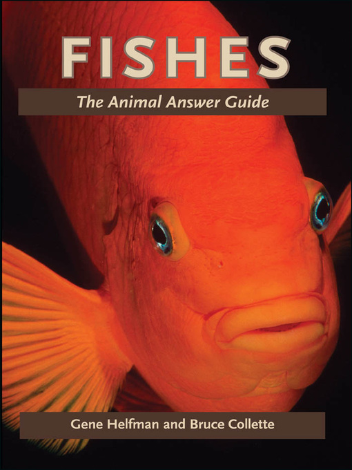 Fishes (eBook): The Animal Answer Guide