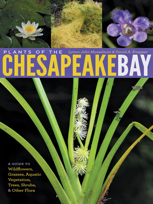 Plants of the Chesapeake Bay (eBook): A Guide to Wildflowers, Grasses, Aquatic Vegetation, Trees, Shrubs, and Other Flora