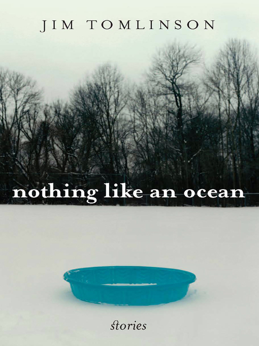 Nothing Like an Ocean (eBook): Stories