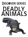 Deadly Animals (eBook): Snakes, Insects, Big Cats and More