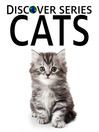Cats (eBook): Cats and Kittens doing Cute Stuff