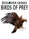 Birds of Prey (eBook): Eagles, Hawks, Vultures and More