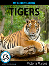 Tigers (eBook)