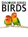 Birds (eBook): Parrots, Lovebirds, Finches and More