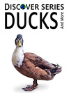 Ducks (eBook): Ducks, Geese and other Water Birds