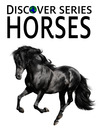 Horses (eBook): Arabians, Quarter Horses, Ponies and More Horses