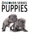 Puppies (eBook): Beagle, Shiz Tsu, Golden Retriever Puppies and More