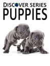 Puppies (eBook): Beagle, Shiz Tsu, Golden Retriever Puppies and More