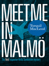 Meet me in Malmö (eBook)