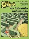Uma Aventura no Labirinto Misterioso (eBook)