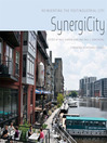 SynergiCity (eBook): Reinventing the Postindustrial City