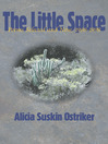 The Little Space (eBook): Poems Selected and New, 1968–1998