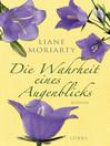 Die Wahrheit eines Augenblicks (eBook): Roman