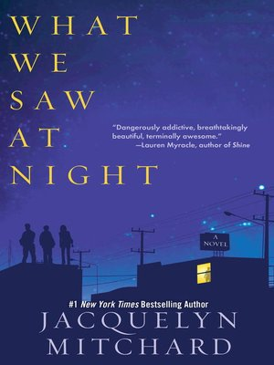 Click this cover for a(n) eBook sample of What We Saw At Night.